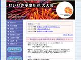 2009 せいせき多摩川花火大会
