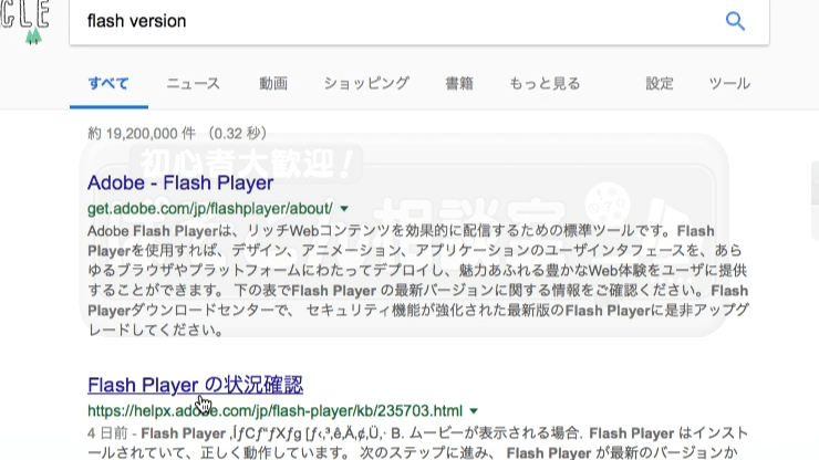 Mac_Safari_Flash_01